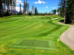 Tee box for Silvertip Short Course